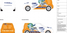 car-options