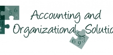 accounting and organizational solutions